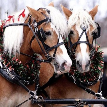 Downtown Piqua Holiday Horse Parade set for November 12